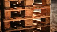V Česku raketově zdražují dřevěné palety. Klíčovým důvodem je exploze cen dřeva v USA - anotační obrázek